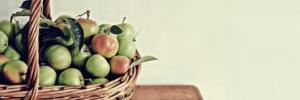 alimentazione, sana alimentazione, home page, il tempo per sé